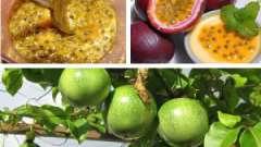 Чим корисні плоди маракуйя, лікувальні властивості?