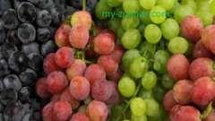 Які цілющі властивості є у винограду?