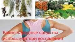 Які народні засоби використовують при запаленні нирок (нефриті)?