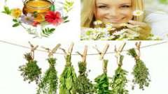Лікарські збори трав для жіночого здоров`я