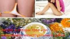 Настої і відвари трав при порушеннях менструального циклу