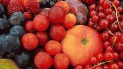 Плодово-ягідна настоянка