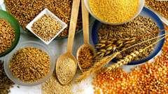 Продукти харчування для профілактики раку товстої кишки