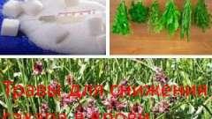 Трави для зниження цукру в крові