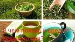 У чому користь і шкоду від зеленого чаю?